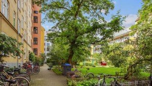 Ny gårdhave kvit og frit i Københavns Kommune